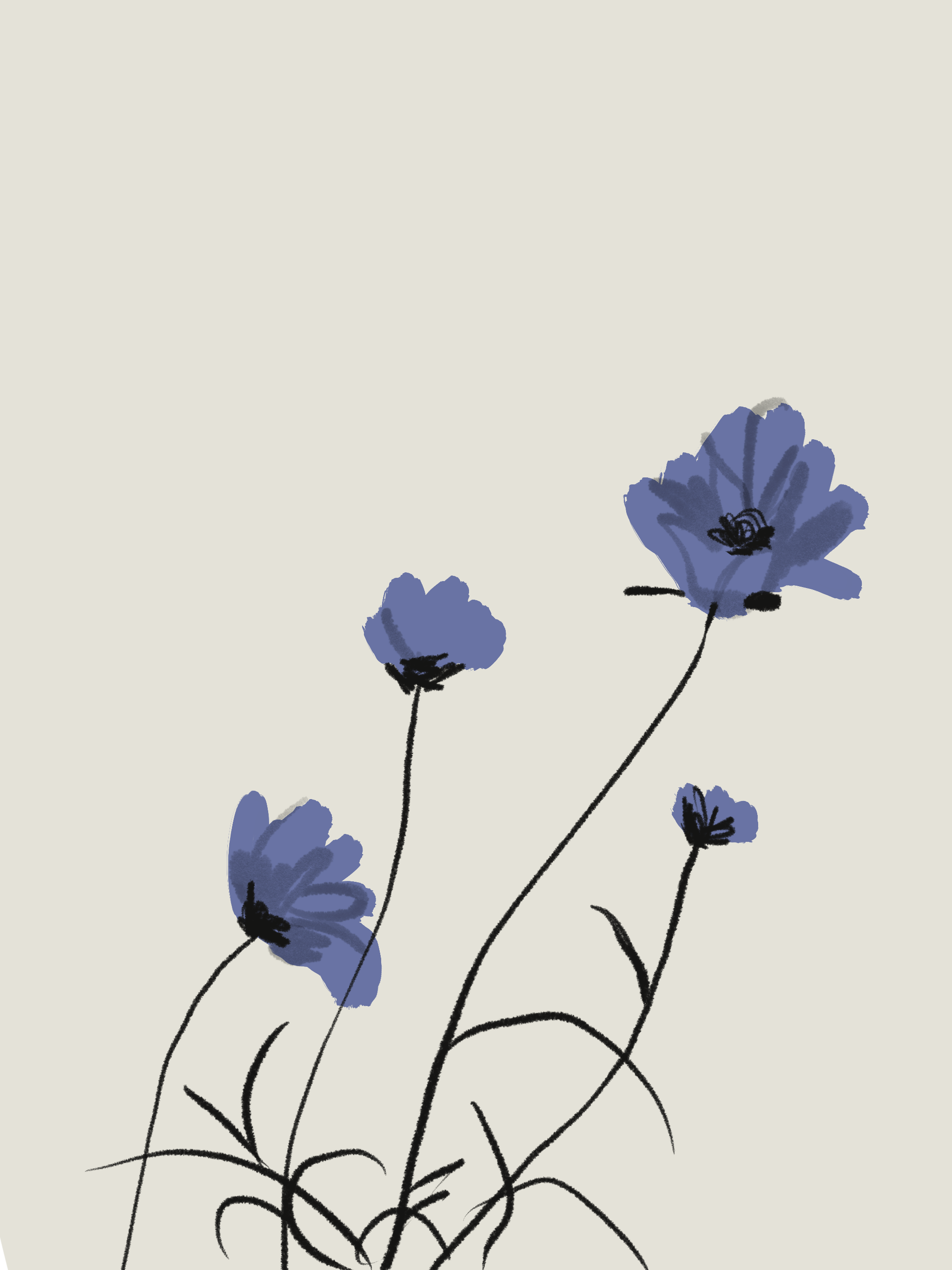 Flowers - illustration by Silvana Mariani