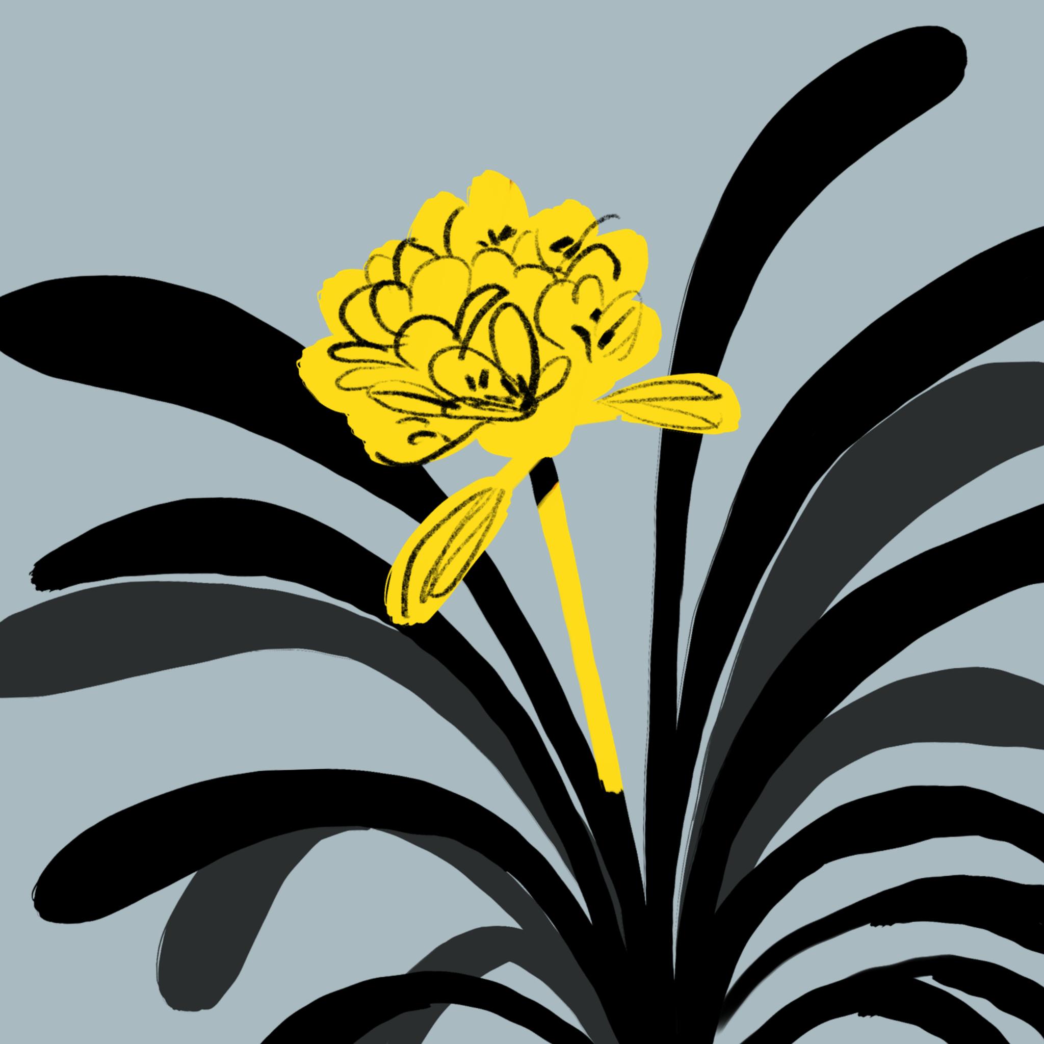 Yellow rough flower by Silvana Mariani